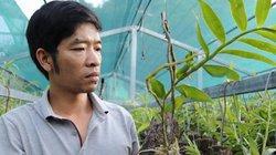 """Bỏ nghề giáo viên, 8X Lai Châu về làm vườn lan """"rậm như rừng"""""""