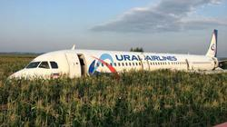 Máy bay chở khách Nga bị chim gây khốn giữa trời, 23 người bị thương