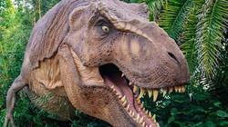 Trải nghiệm cảm giác thăm quan công viên khủng long giữa đời thực