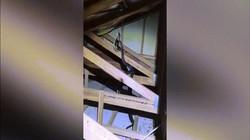 Video: Nghe tiếng động lạ, hoảng hồn thấy 2 con trăn đang tranh đấu ác liệt trên gác xép