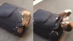 """Thiếu niên Việt bị nhét trong vali buôn người được giải cứu ở Anh gửi thư """"lay động lòng người"""""""