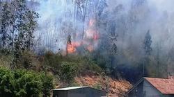 Cháy dữ dội 3ha rừng trồng, uy hiếp nhiều nhà dân ở Bình Định