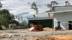 Quảng Ngãi: Chính quyền xử lý lạ vụ mua, xây trái phép trên đất công lấn chiếm?