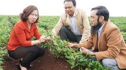 Phát triển nông nghiệp phải liên kết, không thể tự phát, manh mún