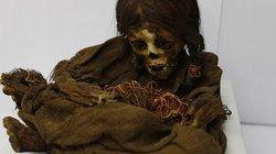 Xác ướp công chúa 500 năm tuổi nguyên vẹn được đưa từ Mỹ về quê nhà sau 129 năm