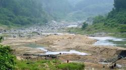 Thủy điện xả, Đà Nẵng vẫn thiếu nước khi độ mặn lên ngưỡng lịch sử