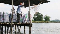 Chuyện lạ An Giang: Nuôi cá tra kiếm tiền tỷ, mua xe cứu thương, lo cho dân nghèo