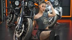 Bảng giá Harley Davidson mới nhất tại Việt Nam: Xe cho giới siêu giàu