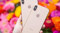 iPhone 11 sẽ có khả năng chụp ảnh đẹp mê hồn nhờ chip A13
