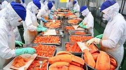 Doanh nghiệp nông sản Việt chưa thật sự sẵn sàng cho EVFTA
