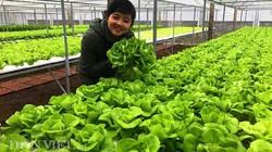 Quảng Nam: Kỳ vọng thu hút DN đầu tư nông nghiệp, nông thôn