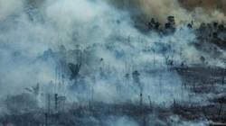 Người Brazil khốn khổ vì nghẹt thở trong khói bụi cháy rừng Amazon