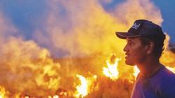 Từ cháy rừng Amazon đến cháy rừng Việt Nam: Những mối nguyhiện hữu