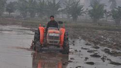 Hà Nội chuyển đổi hiệu quả 40.000ha đất nông nghiệp