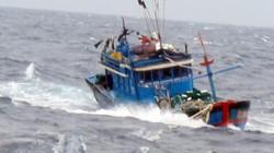 Quảng Bình: 14 thuyền viên phát tín hiệu cầu cứu