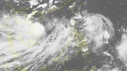 Cập nhật tin bão số 4: Miền Trung bắt đầu mưa to xuất hiện lốc xoáy
