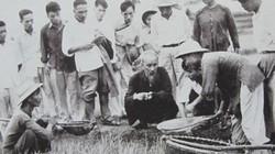 Ân nghĩa của nông dân với Bác Hồ