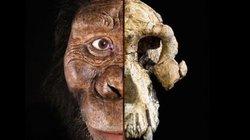 Khuôn mặt của tổ tiên loài người cách đây 3,8 triệu năm