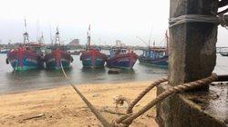 Bão số 4 Podul chưa về, đã có 4 tàu gặp nạn, phải sơ tán 62.000 dân