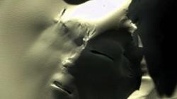Video: Bức tượng có khuôn mặt khổng lồ lộ diện dưới lớp băng dày ở Nam Cực