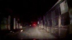 Clip: Em bé bò lổm ngổm ra đường giữa đêm khiến tài xế hết hồn