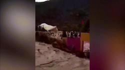 Khoảnh khắc 7 người xấu số bị lũ khủng khiếp cuốn chết khi xem bóng đá ở Morocco