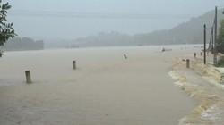 Áp thấp nhiệt đới mạnh lên thành bão, Ban Chỉ đạo ra công điện khẩn