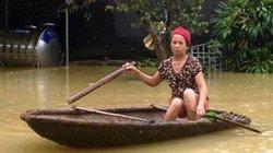 Thọ Xuân (Thanh Hóa): Ngập tứ bề, lúa, ngô, khoai, sắn chìm nghỉm