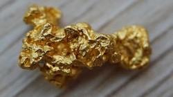 Cho công ty Trung Quốc khai thác vàng, người dân quốc gia châu Phi vỡ mộng