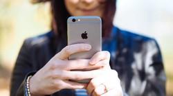 So sánh iPhone 6s và 6 Plus trong năm 2019: Liệu có còn đáng mua?