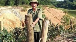 Phá hoại cây trồng,  vật nuôi - bị xử lý ra sao?