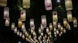Ảnh: Phố bích họa Phùng Hưng lung linh bởi hàng trăm đèn trung thu