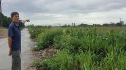 Vụ kiện Chủ tịch Hà Nam: Quyết định vi phạm, vẫn không ảnh hưởng?!