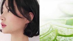 Nước gạo, lô hội dưỡng tóc tơ mềm mại như dưỡng ở salon