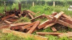 Gia Lai: Bị phát hiện, lâm tặc bỏ 94 lóng gỗ thoát thân