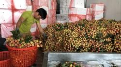 Trung Quốc không còn là chợ biên giới, nông sản Việt ôm quả đắng
