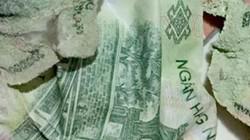 Bạn đã thuộc cách đổi tiền bị rách, hư hỏng tại ngân hàng hay chưa?