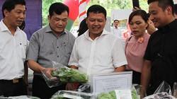 Đốc thúc liên kết sản xuất nông nghiệp theo chuỗi ở Thủ đô