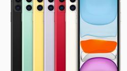 """iPhone 11 bị người dùng """"ném đá"""" cỡ nào?"""