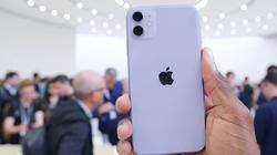 """Lý giải """"vô lý nhưng lại rất hợp lý"""" của 6 màu iPhone 11"""