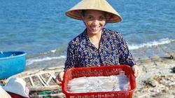 Trúng đậm 10 tấn cá mực, ngư dân Cẩm Nhượng bỏ túi gần 3 tỷ