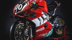 """Ducati Panigale V4 R Endurance - """"Ngựa chiến"""" của Ducati tại giải đua sức bền 2019"""