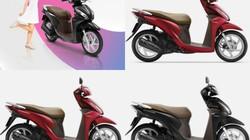 Xe ga ăn khách Honda Vision ra màu mới, giá không đổi