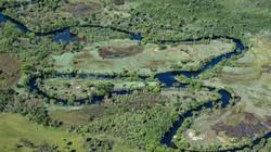 Không phải Amazon, đây mới là hệ sinh thái đang bị tàn phá nghiêm trọng nhất ở Brazil
