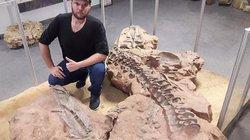 Phát hiện dấu tích cá sấu khổng lồ dài 10m chuyên săn khủng long