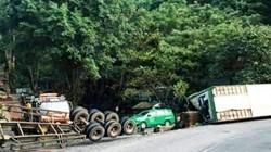 """Xe chở 20 tấn sầu riêng lật, """"phơi bụng"""" giữa đèo Bảo Lộc"""