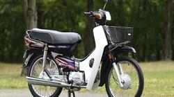 """Honda Cub, Dream, Future tạo """"thiên đường xe"""" ở Việt Nam thế nào?"""