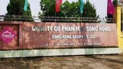 """Công ty May Sông Hồng Nam Định bị xử phạt vì """"nhập nhèm"""" kê khai hàng hoá"""