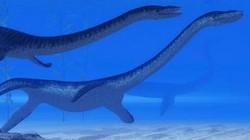 """Phát hiện """"quái vật"""" hồ Loch Ness gần 8 mét nổi lên mặt nước"""