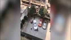 """Video """"tài xế kém nhất năm"""": Hơn chục lần không lùi được xe vào đúng chỗ và cái kết"""